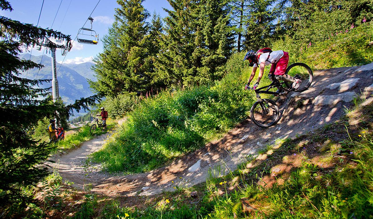 Mountain bikers in the summer alps